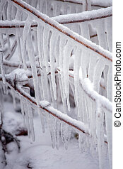 Winter still life with icicles