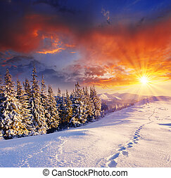 winter - majestic sunset in the winter mountains landscape