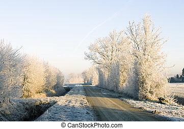winter, straße