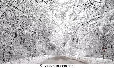 winter, straat, besneeuwd