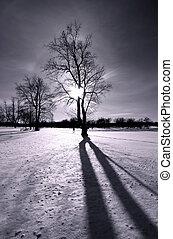 Winter sun light