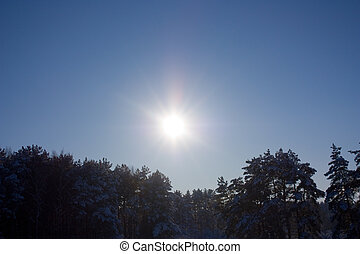 winter sun, sky