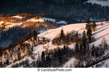 winter sunrise in Carpathian mountains. beautiful landscape...