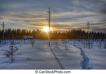 Winter sunset over farm in Swedish Lapland