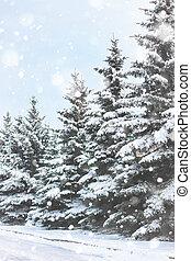 winter, tanne, schnee