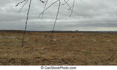 Winter thaw field - Field with almost no snow during thaw at...