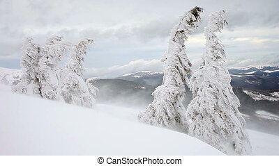 Winter. The Mountain landscape.