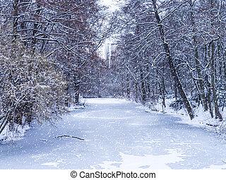 Winter,  TIERGARTEN