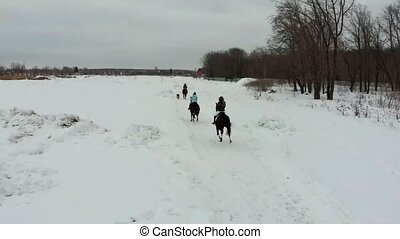 Winter time. A group of young women riding horses on a snowy...