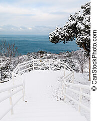Winter time with snow trees and sea at background. Snowy cold landscape