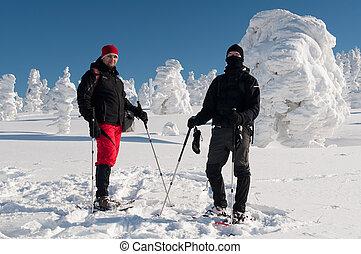 Winter Tourists