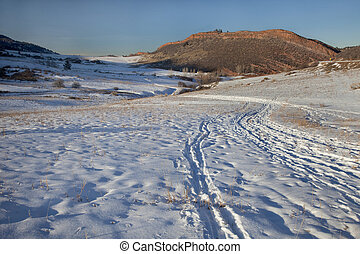 winter trail in Colorado Rocky Mountains - winter trail with...