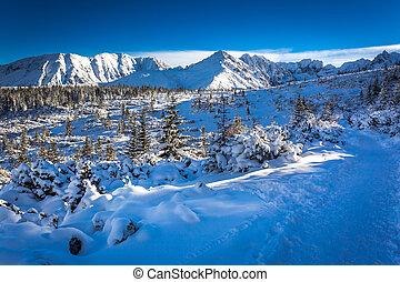 Winter trail on the mountain peak