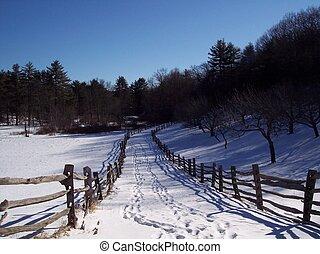 winter, trail.
