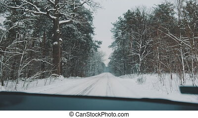 Winter travel. Point of view shot from the car driving on the road covered in snow surrounded by tall trees. High quality 4k footage