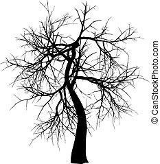 Winter tree - Silhouette of a winter tree