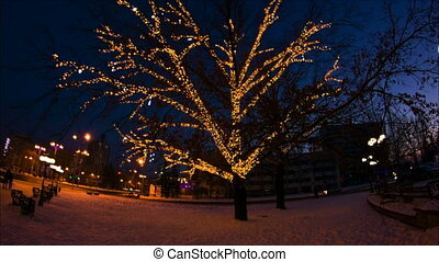 Winter tree with lights