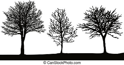 Hand traced winter trees