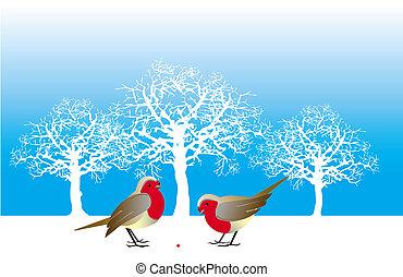 winter, vögel
