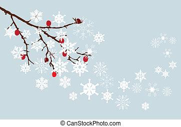 winter - vector snow branch