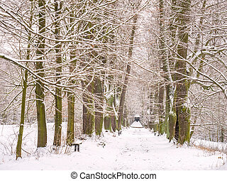 Winter view through lime tree alley with graveyard pavilon at the end.