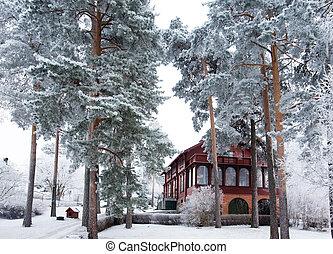 winter, villa