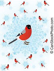 winter, vogel