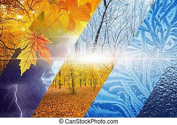 winter., vueltas, concept., pronóstico, tiempo, otoño