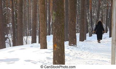Walking in a winter park.
