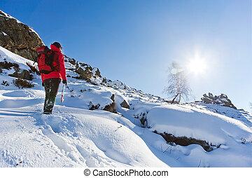 winter, wandelende