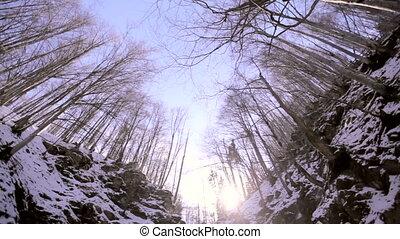Winter waterfall. Carpathians Ukraine