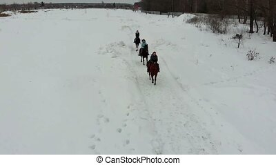 Winter weather. A group of young women riding horses on a...