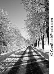 winter, weg