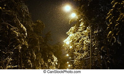 Winter. Winter night street