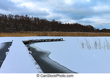 Winter with snow on a lake in Prerow, Germany