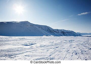 Winter Wonderland - A beautiful winter landscape with a...
