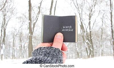 Winter wonderland. Christmas, joy, holiday idea.