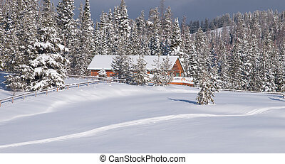 Winter wonderland - House in the woods covered with snow.