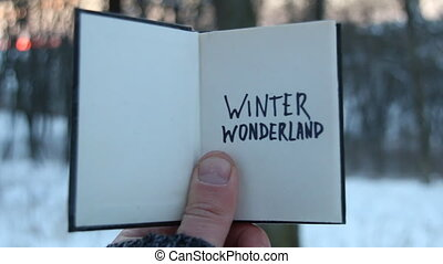 Winter wonderland idea. Book and text.