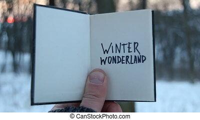 Winter wonderland idea. Book and text.