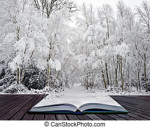 Winter wonderland in pages of magical book