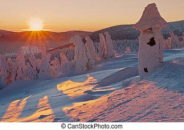 Winter Wonderland - Winter wonderland during the colorful...