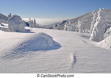 Winter Wonderland - Beautiful winter wonderland during the...