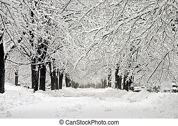Winter wonderland - A cemetery after a blizzard.