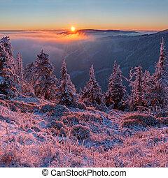 Winter Wonderland - View of winter wonderland during the...
