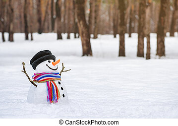 Winter wonderland with a funny snowman