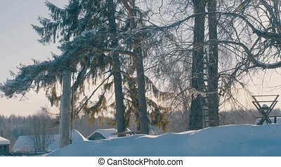 Winter yard in a hoarfrost. Snowfall. Snow covered roofs of...