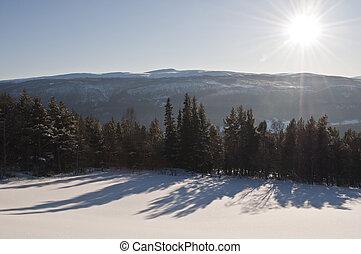 winterlandscape in sunshine