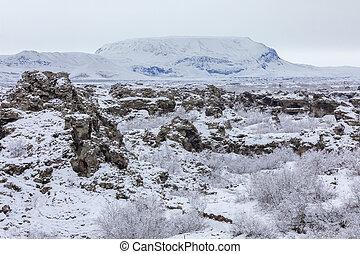 winterlandschaft, dimmuborgir, see, myvatn, island