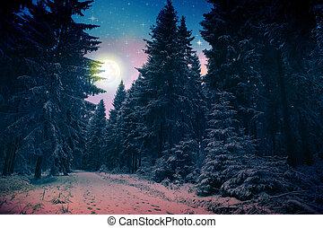 winterlandschaft, mit, schneebedeckte , tannen, und, voll, moon.